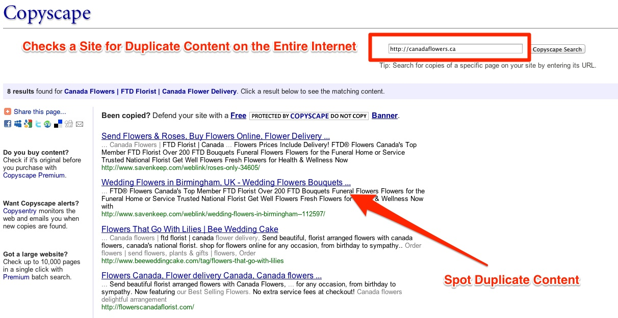 Check a Page for Duplicate Content Across the Entire Internet