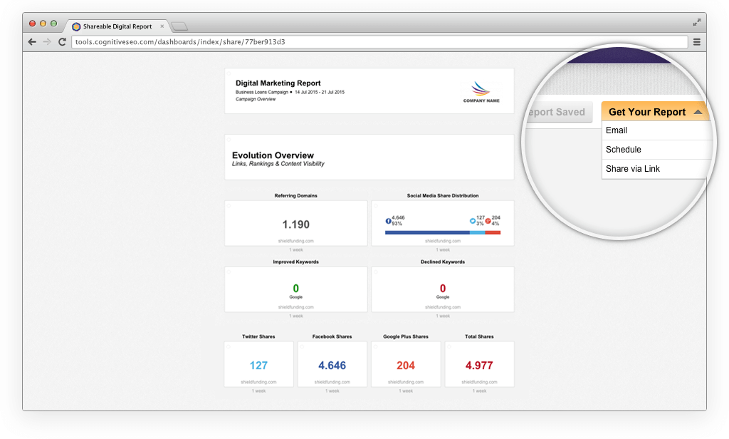 Share Reports with Clients and Team Members