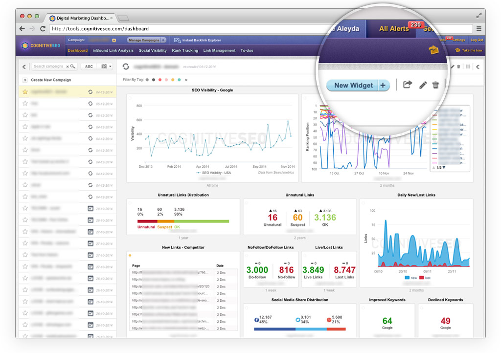 cognitiveSEO Dashboard